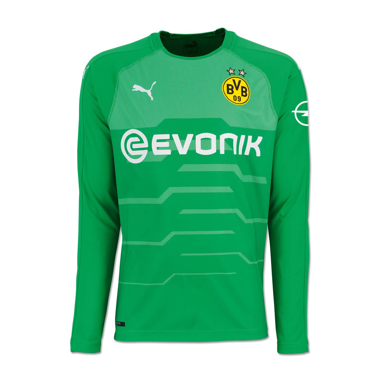 release date d5f20 247ea Borussia Dortmund Goalkeeper Jersey 2018-19 - green